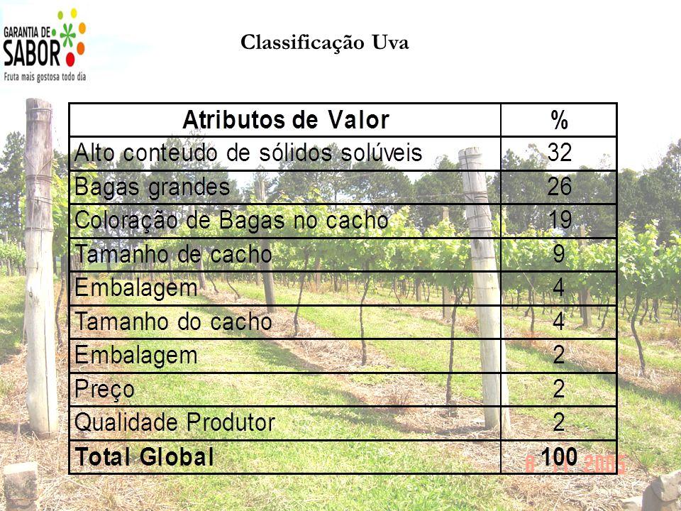 Classificação Uva