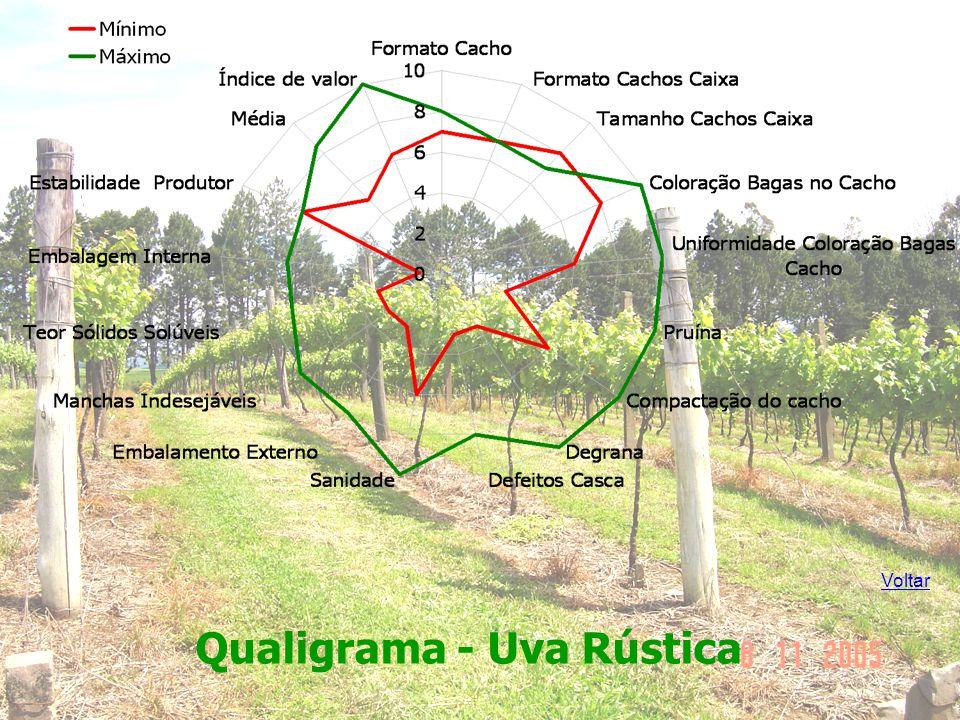 Qualigrama - Uva Rústica