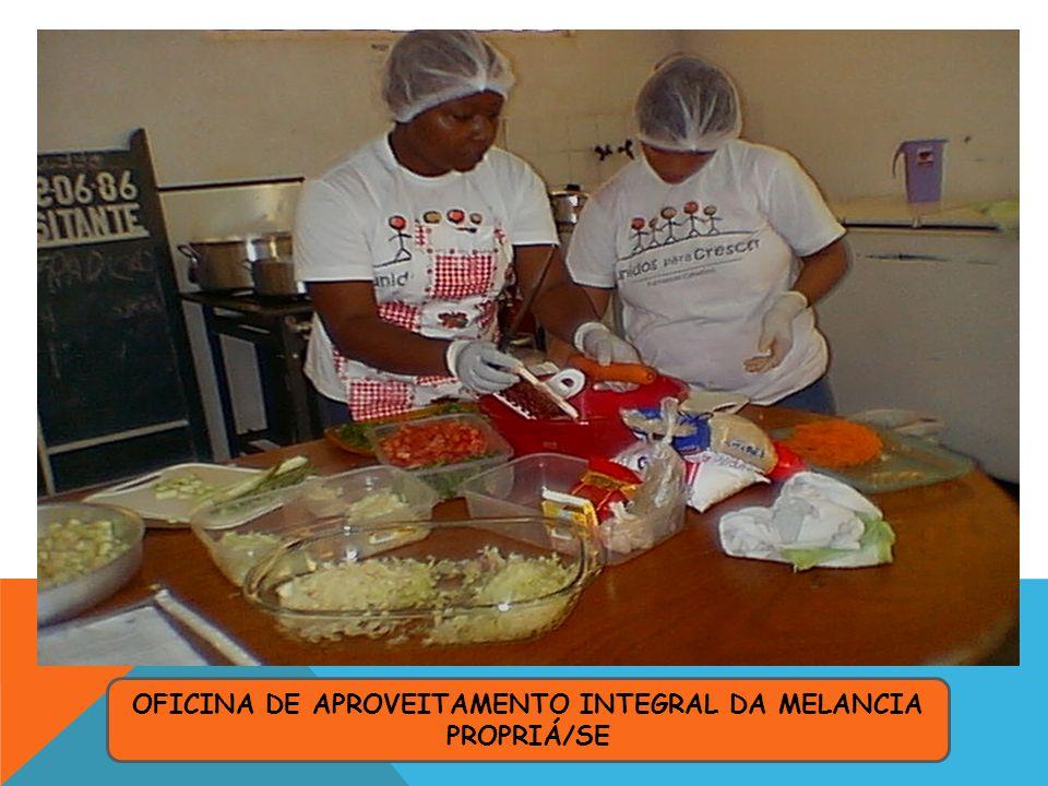 OFICINA DE APROVEITAMENTO INTEGRAL DA MELANCIA PROPRIÁ/SE
