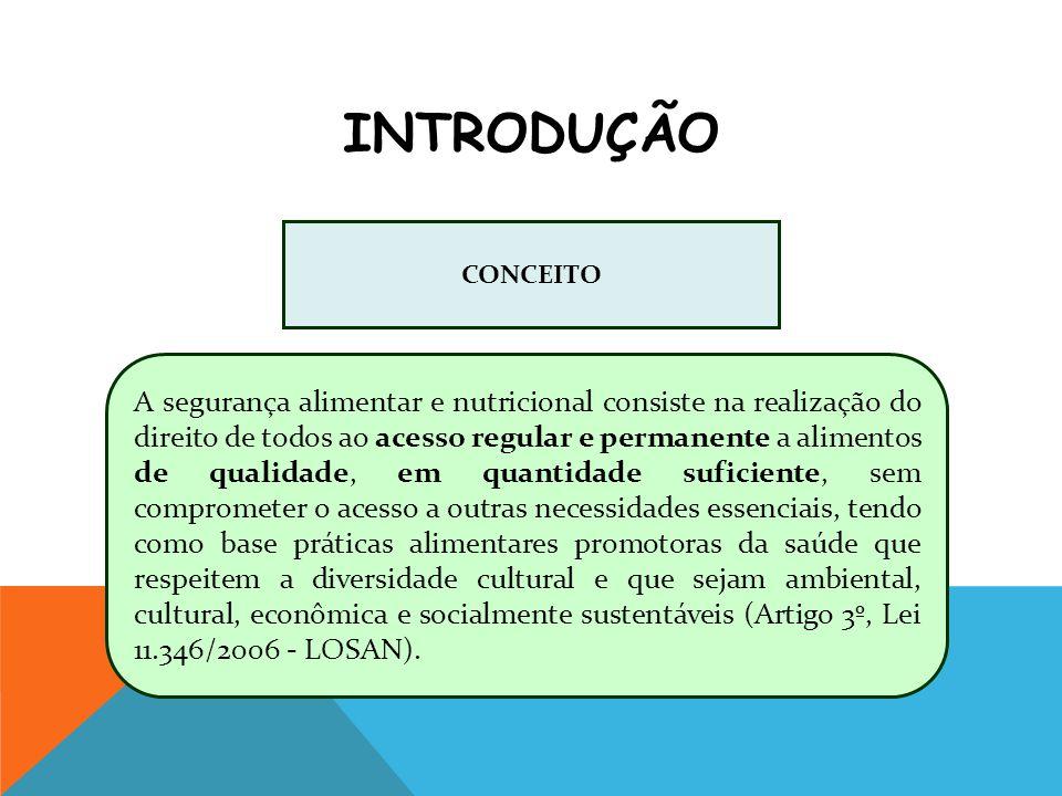 DISPONIBILIDADE DE ALIMENTOS ACESSO AOS ALIMENTOS FORMA DE UTILIZAÇÃO ESTABILIDADE AO LONGO DO TEMPO (Fonte:BELIK, 2012) DIMENSÕES DA SEGURANÇA ALIMENTAR E NUTRICIONAL