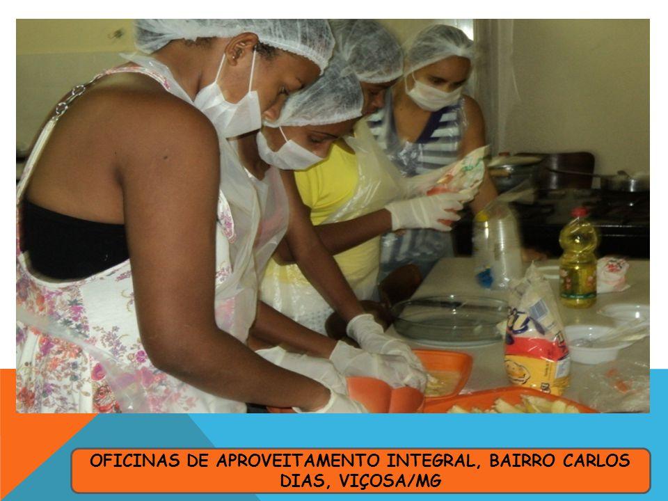OFICINAS DE APROVEITAMENTO INTEGRAL, BAIRRO CARLOS DIAS, VIÇOSA/MG