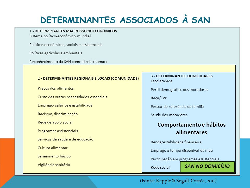 (IN) SEGURANÇA ALIMENTAR FAMÍLIA E EDUCAÇÃO ALIMENTAR QUALIDADE DE VIDA