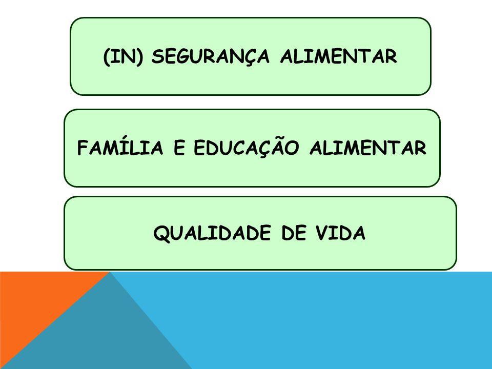 PROJETO CASA NOVA VIDA NOVA, SEGURANÇA ALIMENTAR E NUTRICIONAL - GOVERNO DO ESTADO/ONG SEMEAR, SERGIPE (2006/2009) PROJETO ALIMENTAÇÃO: CONSUMO, APROVEITAMENTO INTEGRAL E PRODUÇÃO CASEIRA DE ALIMENTOS NA PERSPECTIVA AGROECOLÓGICA - UNIVERSIDADE FEDERAL DE VIÇOSA/DED, MINAS GERAIS (2011/2014) PARTILHANDO EXPERIÊNCIAS