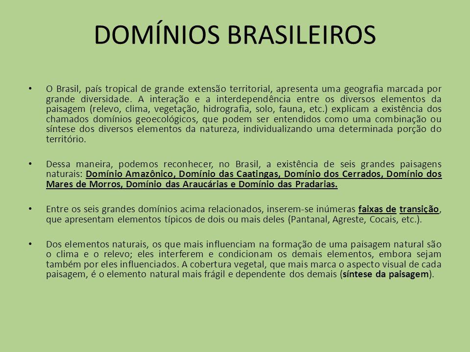DOMÍNIOS BRASILEIROS O Brasil, país tropical de grande extensão territorial, apresenta uma geografia marcada por grande diversidade. A interação e a i