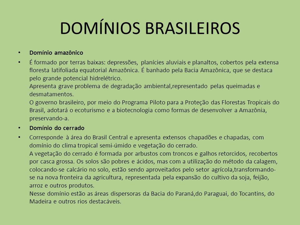 DOMÍNIOS BRASILEIROS Domínio amazônico É formado por terras baixas: depressões, planícies aluviais e planaltos, cobertos pela extensa floresta latifol