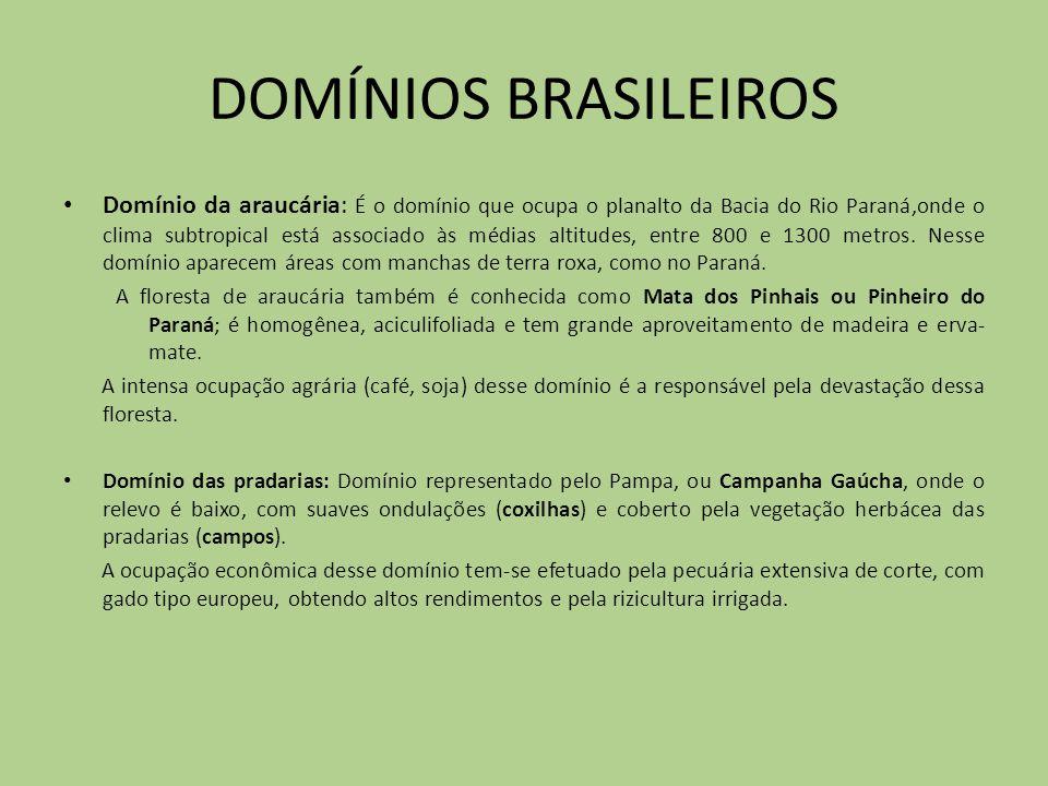 DOMÍNIOS BRASILEIROS Domínio da araucária: É o domínio que ocupa o planalto da Bacia do Rio Paraná,onde o clima subtropical está associado às médias a