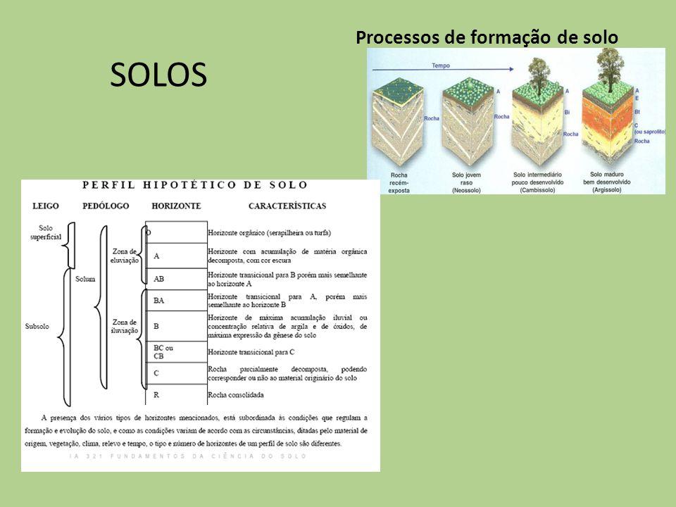 Processos de formação de solo SOLOS