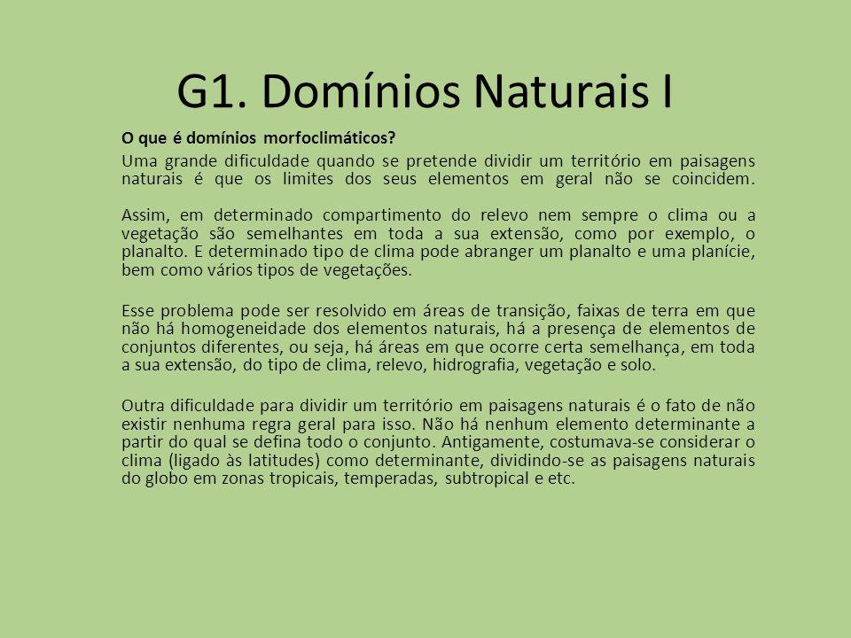 G1. Domínios Naturais I O que é domínios morfoclimáticos? Uma grande dificuldade quando se pretende dividir um território em paisagens naturais é que