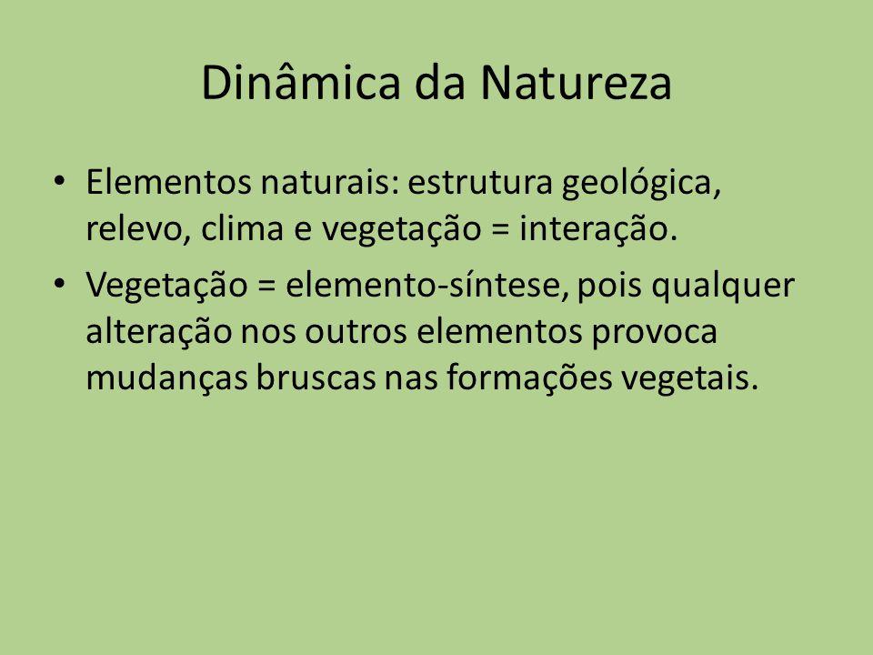 Dinâmica da Natureza Elementos naturais: estrutura geológica, relevo, clima e vegetação = interação. Vegetação = elemento-síntese, pois qualquer alter
