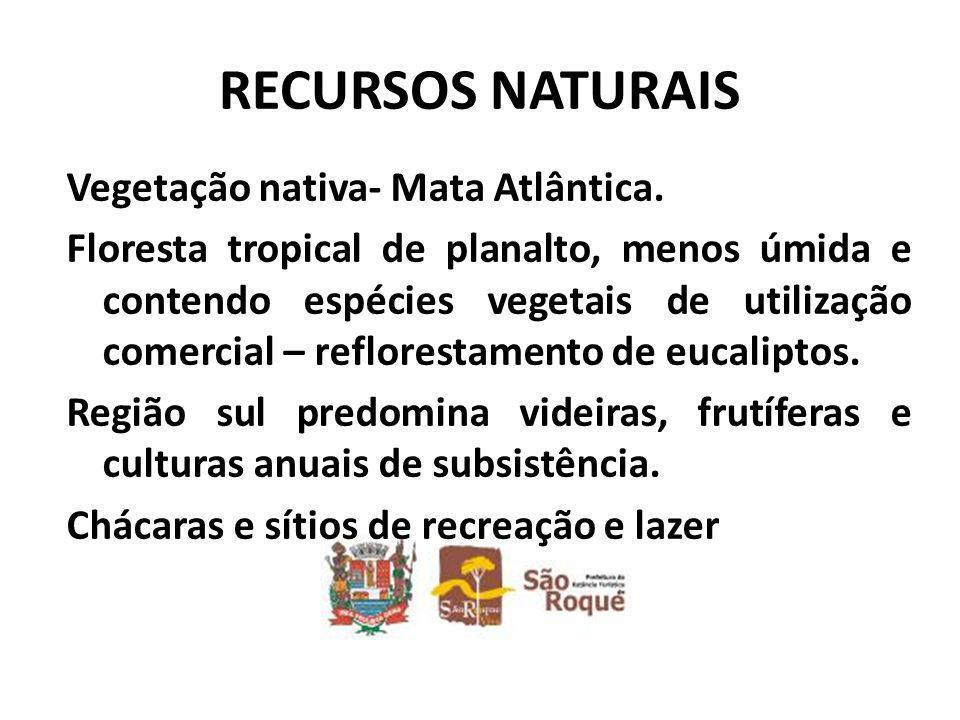 RECURSOS NATURAIS Vegetação nativa- Mata Atlântica.