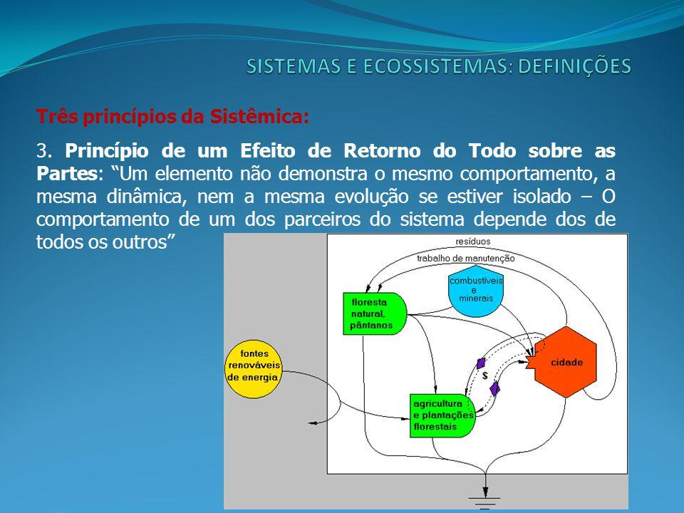 Três princípios da Sistêmica: 3.