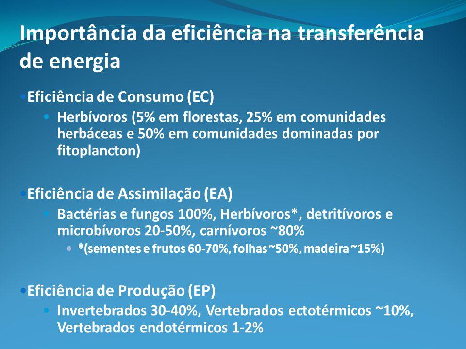 Importância da eficiência na transferência de energia Eficiência de Consumo (EC) Herbívoros (5% em florestas, 25% em comunidades herbáceas e 50% em comunidades dominadas por fitoplancton) Eficiência de Assimilação (EA) Bactérias e fungos 100%, Herbívoros*, detritívoros e microbívoros 20-50%, carnívoros ~80% *(sementes e frutos 60-70%, folhas ~50%, madeira ~15%) Eficiência de Produção (EP) Invertebrados 30-40%, Vertebrados ectotérmicos ~10%, Vertebrados endotérmicos 1-2%