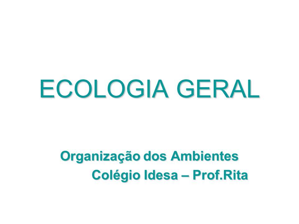 ECOLOGIA GERAL Organização dos Ambientes Colégio Idesa – Prof.Rita Colégio Idesa – Prof.Rita