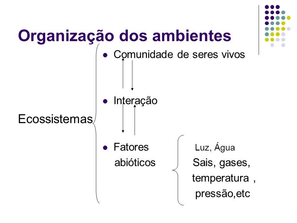 Organização dos ambientes Ecossistemas Comunidade de seres vivos Interação Fatores Luz, Água abióticos Sais, gases, temperatura, pressão,etc
