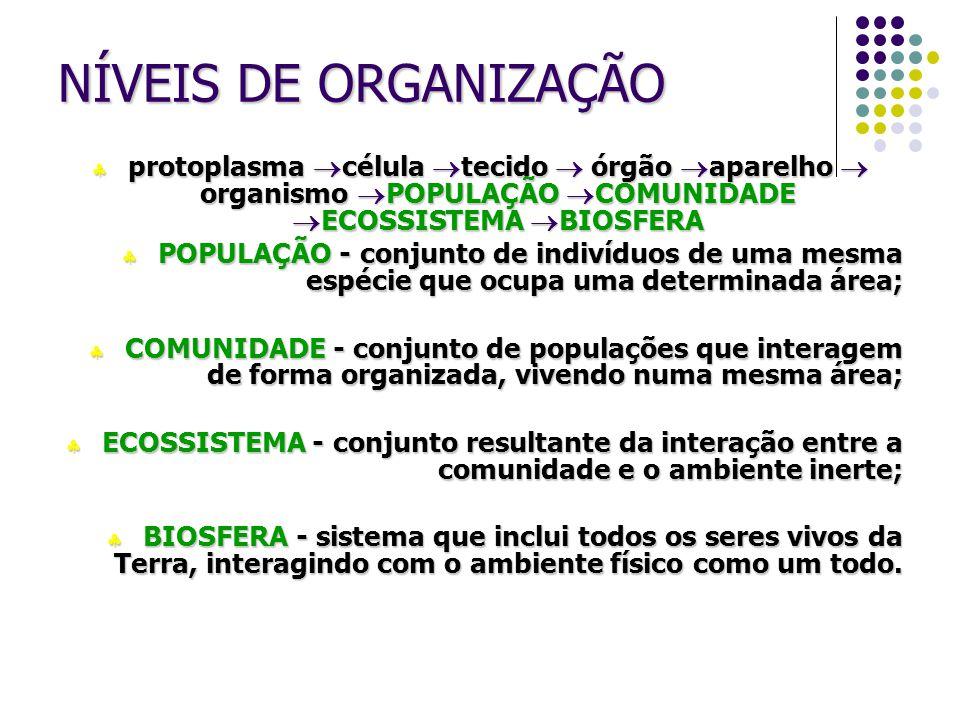 NÍVEIS DE ORGANIZAÇÃO  protoplasma  célula  tecido  órgão  aparelho  organismo  POPULAÇÃO  COMUNIDADE  ECOSSISTEMA  BIOSFERA  POPULAÇÃO - c