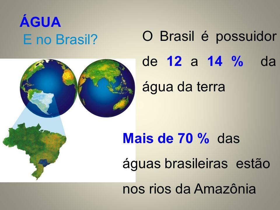 ÁGUA E no Brasil? Mais de 70 % das águas brasileiras estão nos rios da Amazônia O Brasil é possuidor de 12 a 14 % da água da terra