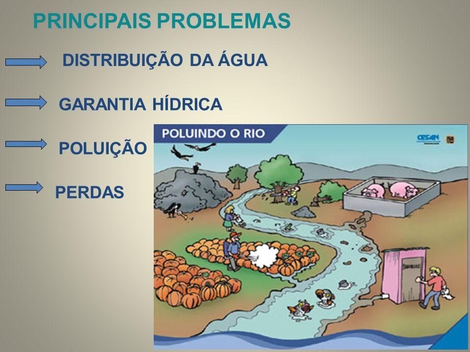 PRINCIPAIS PROBLEMAS DISTRIBUIÇÃO DA ÁGUA GARANTIA HÍDRICA POLUIÇÃO PERDAS