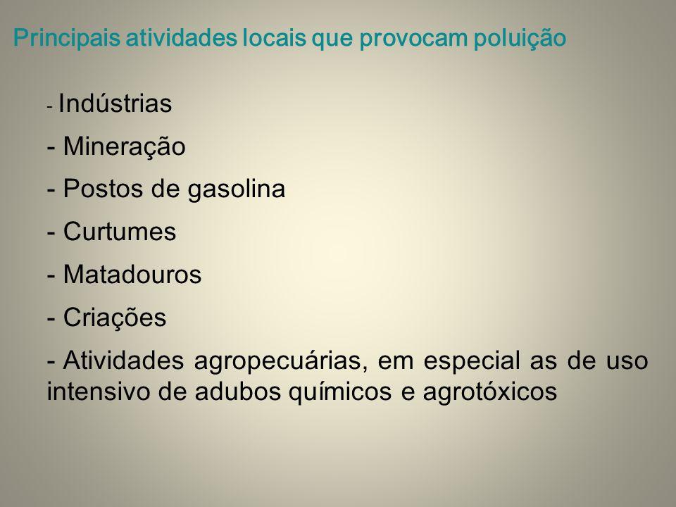 - Indústrias - Mineração - Postos de gasolina - Curtumes - Matadouros - Criações - Atividades agropecuárias, em especial as de uso intensivo de adubos