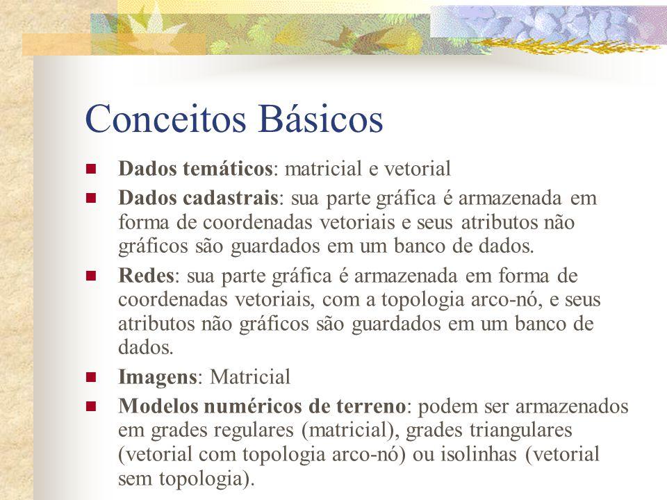 Conceitos Básicos Dados temáticos: matricial e vetorial Dados cadastrais: sua parte gráfica é armazenada em forma de coordenadas vetoriais e seus atri
