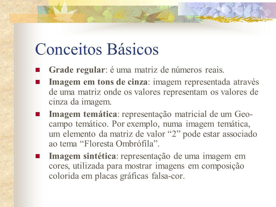 Conceitos Básicos Grade regular: é uma matriz de números reais. Imagem em tons de cinza: imagem representada através de uma matriz onde os valores rep