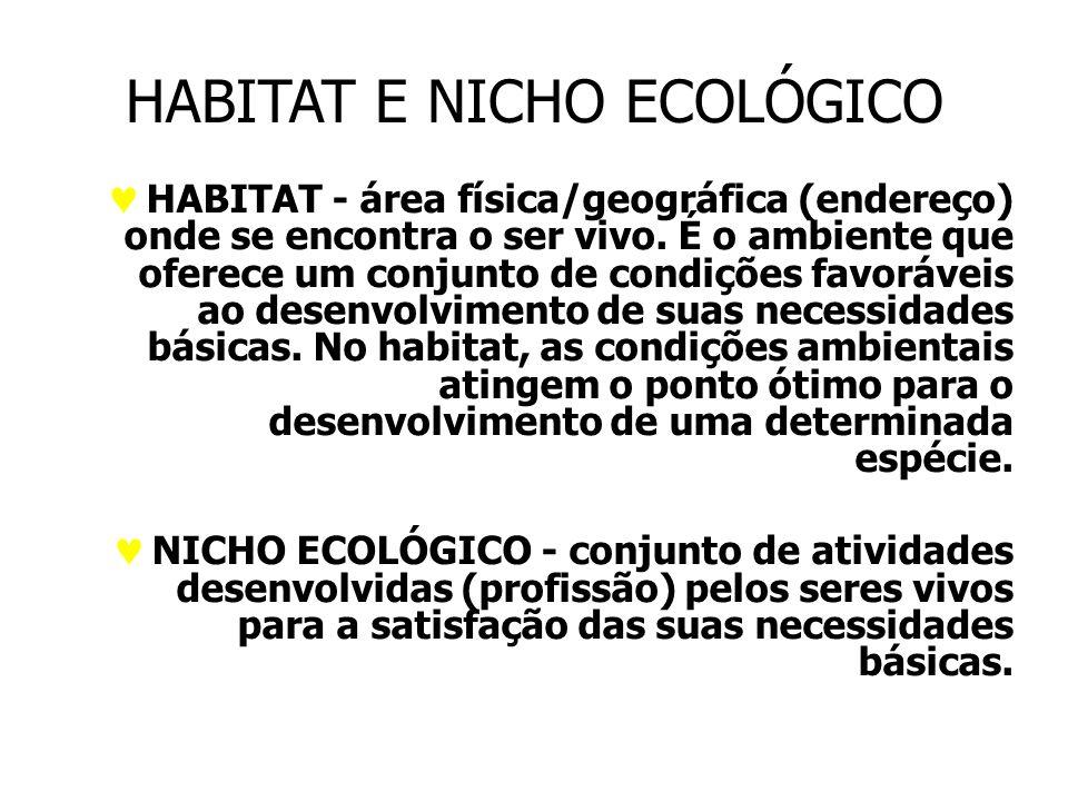 HABITAT E NICHO ECOLÓGICO HABITAT - área física/geográfica (endereço) onde se encontra o ser vivo.