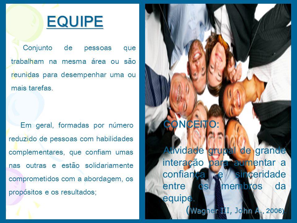 EQUIPE Conjunto de pessoas que trabalham na mesma área ou são reunidas para desempenhar uma ou mais tarefas. Em geral, formadas por número reduzido de