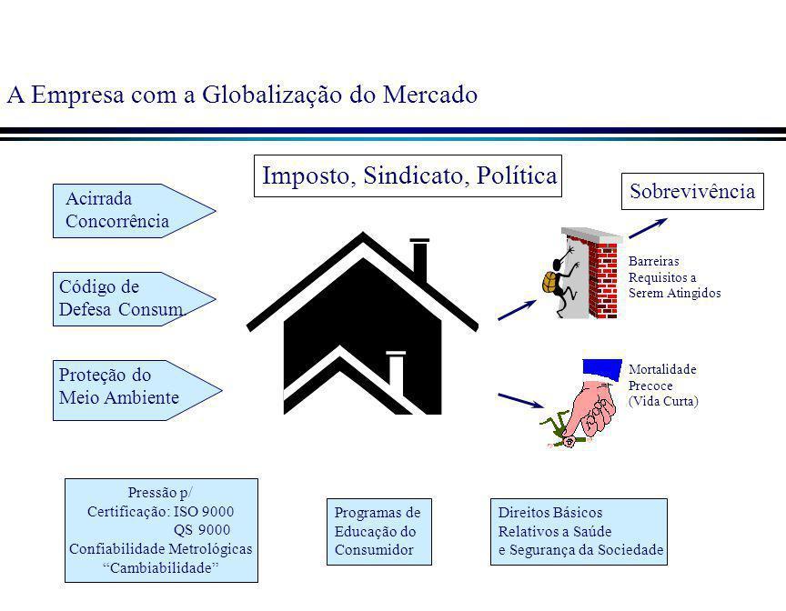 A Empresa com a Globalização do Mercado Direitos Básicos Relativos a Saúde e Segurança da Sociedade Programas de Educação do Consumidor Pressão p/ Cer