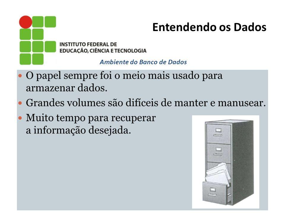 Ambiente do Banco de Dados Entendendo os Dados
