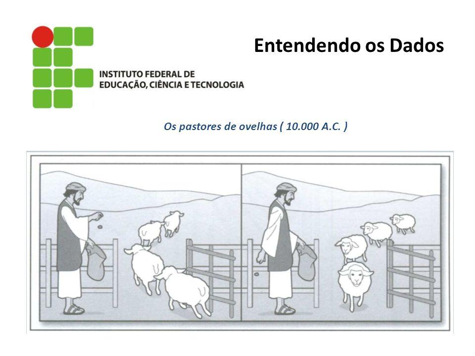 Associação: 1 pedra = 1 ovelha Entendendo os Dados