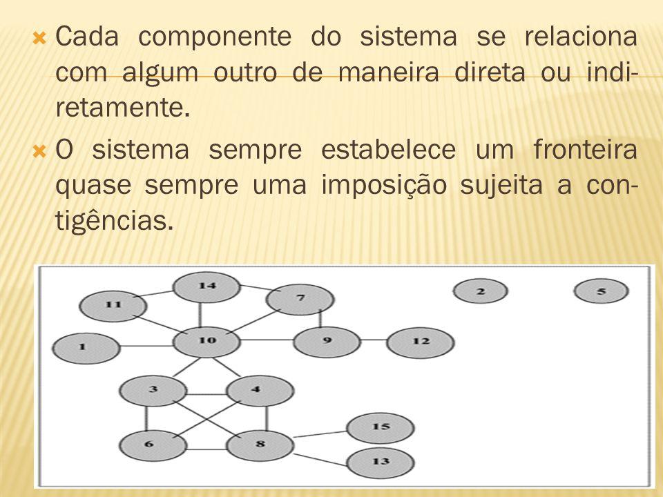  Cada componente do sistema se relaciona com algum outro de maneira direta ou indi- retamente.  O sistema sempre estabelece um fronteira quase sempr