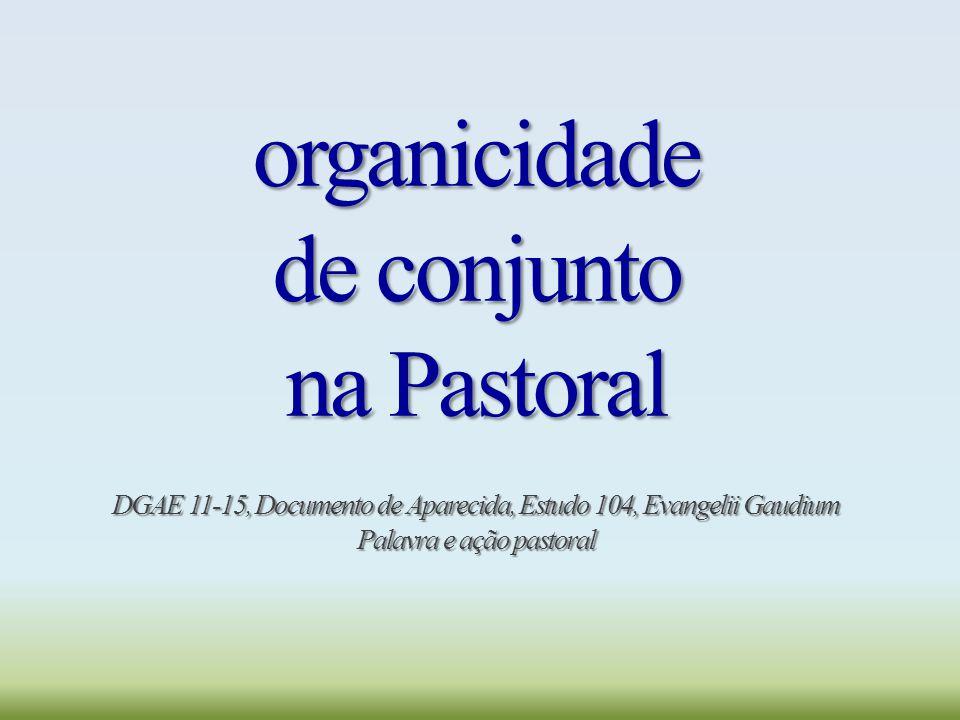 organicidade de conjunto na Pastoral DGAE 11-15, Documento de Aparecida, Estudo 104, Evangelii Gaudium Palavra e ação pastoral