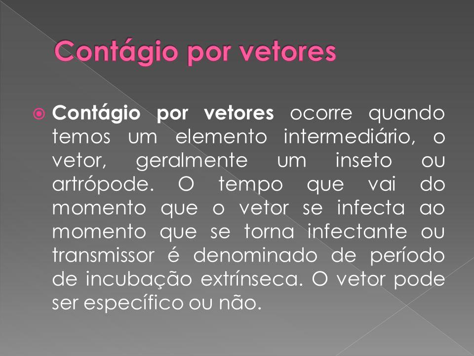  Contágio por vetores ocorre quando temos um elemento intermediário, o vetor, geralmente um inseto ou artrópode. O tempo que vai do momento que o vet