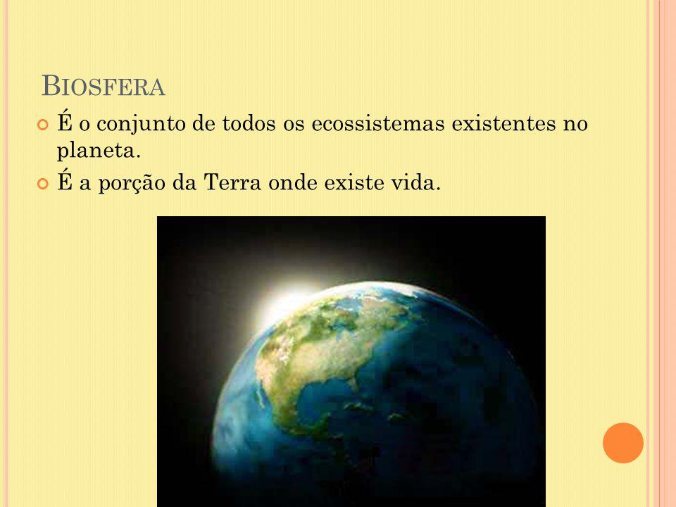 B IOSFERA É o conjunto de todos os ecossistemas existentes no planeta. É a porção da Terra onde existe vida.