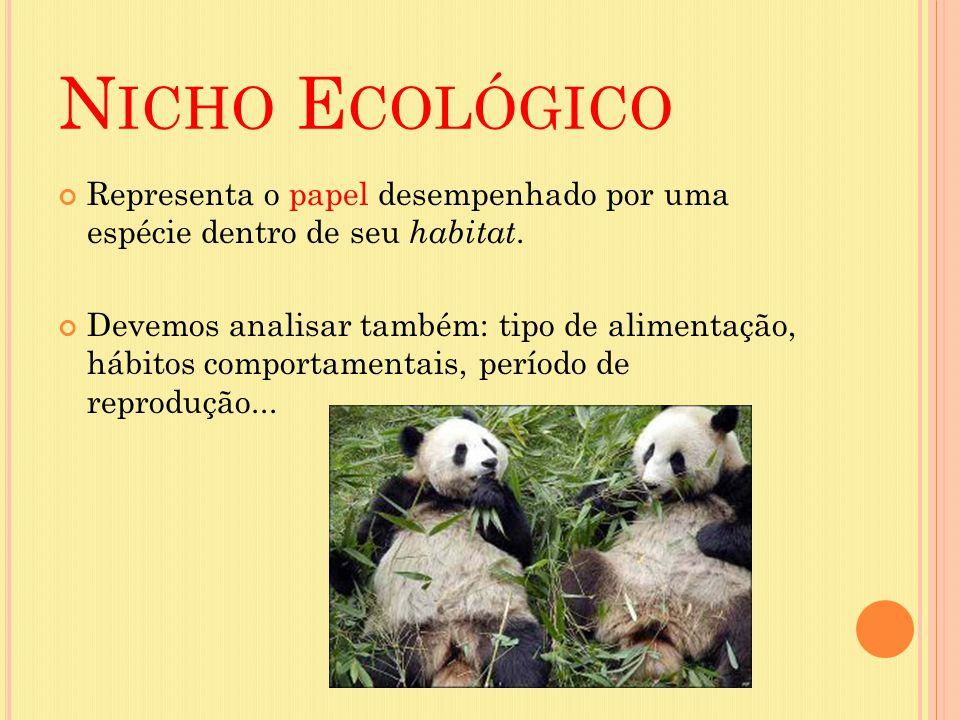 N ICHO E COLÓGICO Representa o papel desempenhado por uma espécie dentro de seu habitat. Devemos analisar também: tipo de alimentação, hábitos comport