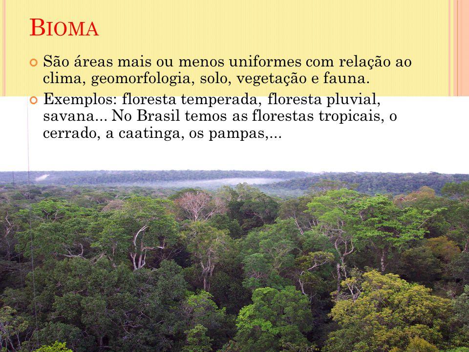 B IOMA São áreas mais ou menos uniformes com relação ao clima, geomorfologia, solo, vegetação e fauna. Exemplos: floresta temperada, floresta pluvial,