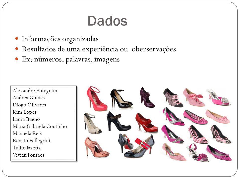 Dados Informações organizadas Resultados de uma experiência ou oberservações Ex: números, palavras, imagens Alexandre Boteguim Andres Gomes Diogo Oliv
