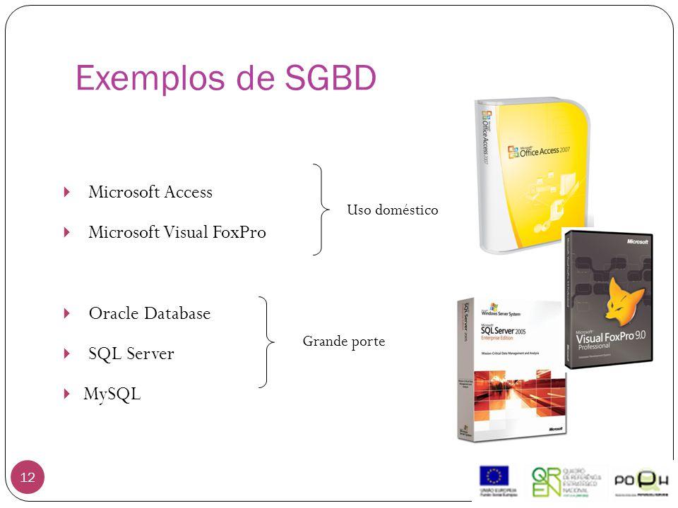 Exemplos de SGBD 12  Microsoft Access  Microsoft Visual FoxPro  Oracle Database  SQL Server  MySQL Uso doméstico Grande porte
