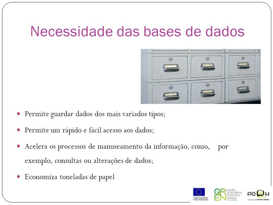 Necessidade das bases de dados Permite guardar dados dos mais variados tipos; Permite um rápido e fácil acesso aos dados; Acelera os processos de manuseamento da informação, como, por exemplo, consultas ou alterações de dados; Economiza toneladas de papel