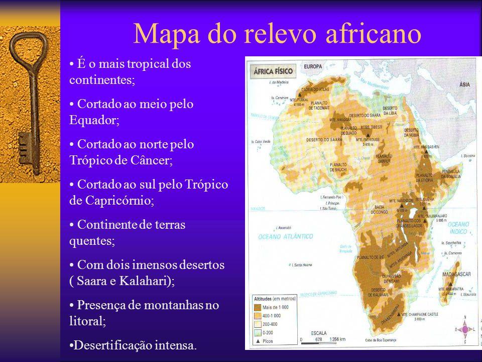 Conseqüências da colonização  Imposição de uma economia e sociedade em modelos europeus;  Destruição da origem desse povo;  Dependência econômica;