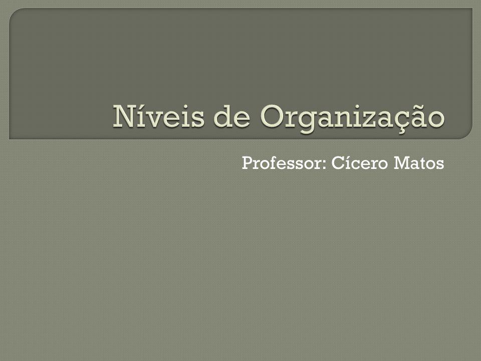 Professor: Cícero Matos