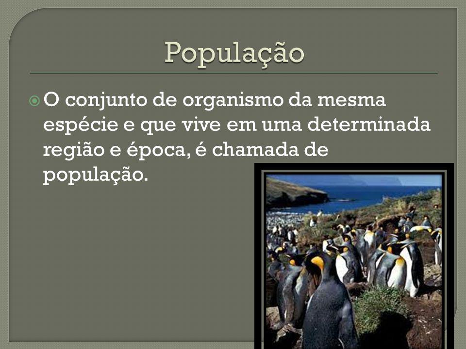  O conjunto de organismo da mesma espécie e que vive em uma determinada região e época, é chamada de população.