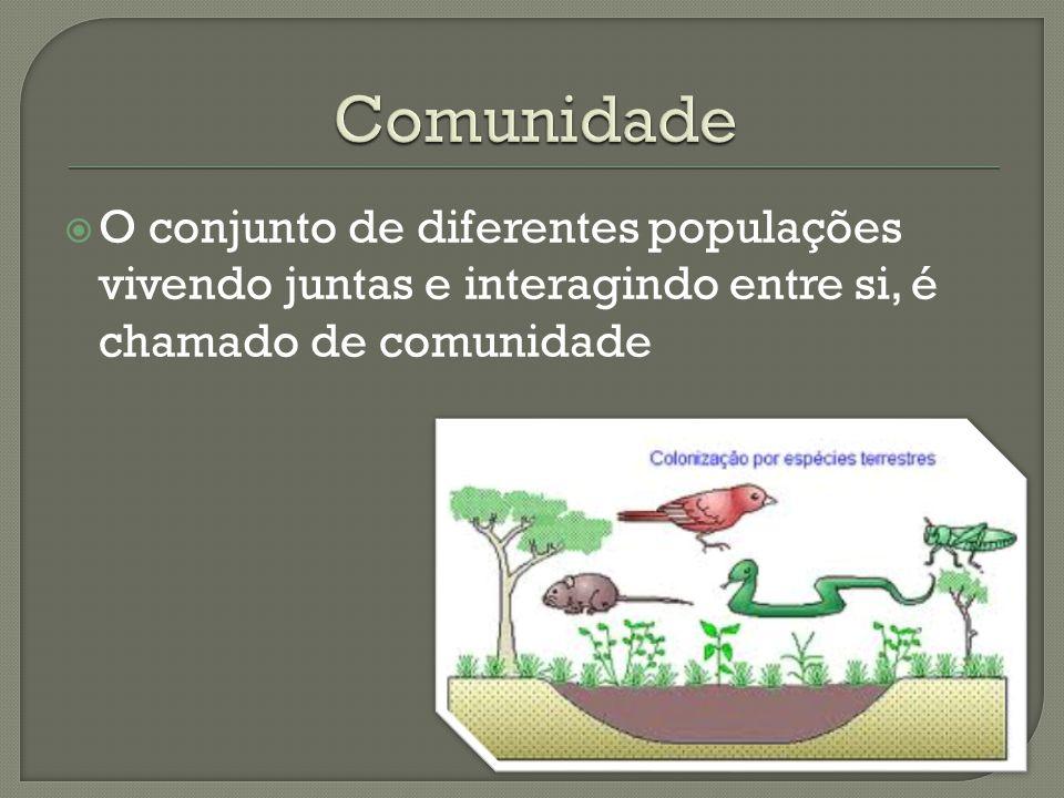  O conjunto de diferentes populações vivendo juntas e interagindo entre si, é chamado de comunidade
