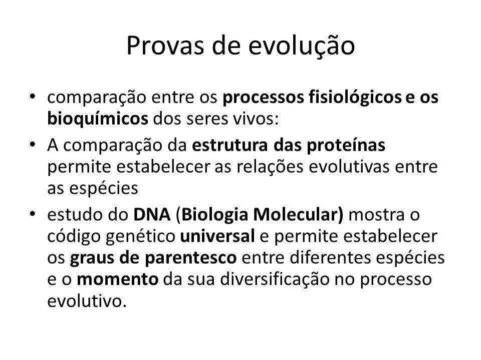 Provas de evolução comparação entre os processos fisiológicos e os bioquímicos dos seres vivos: A comparação da estrutura das proteínas permite estabe