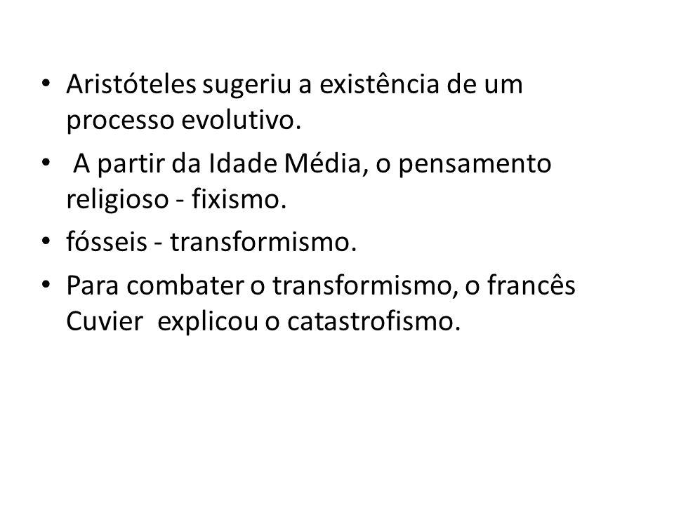 Aristóteles sugeriu a existência de um processo evolutivo. A partir da Idade Média, o pensamento religioso - fixismo. fósseis - transformismo. Para co