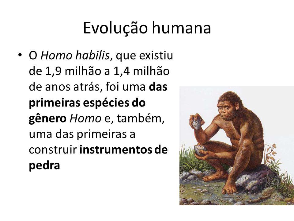 Evolução humana O Homo habilis, que existiu de 1,9 milhão a 1,4 milhão de anos atrás, foi uma das primeiras espécies do gênero Homo e, também, uma das