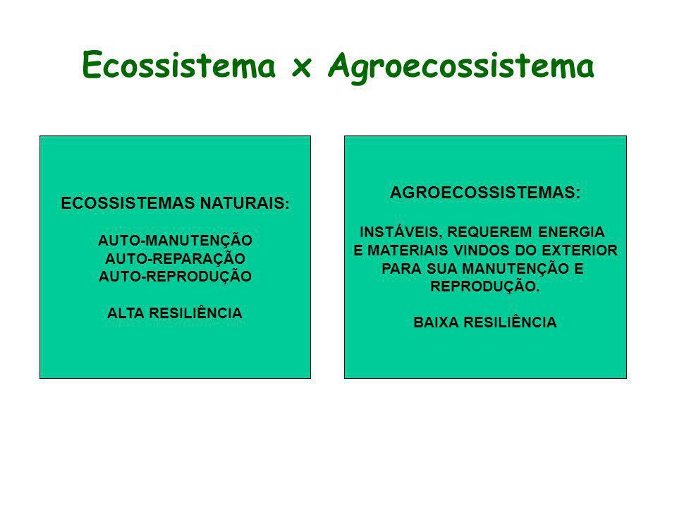 Ecossistema x Agroecossistema ECOSSISTEMAS NATURAIS : AUTO-MANUTENÇÃO AUTO-REPARAÇÃO AUTO-REPRODUÇÃO ALTA RESILIÊNCIA AGROECOSSISTEMAS: INSTÁVEIS, REQ