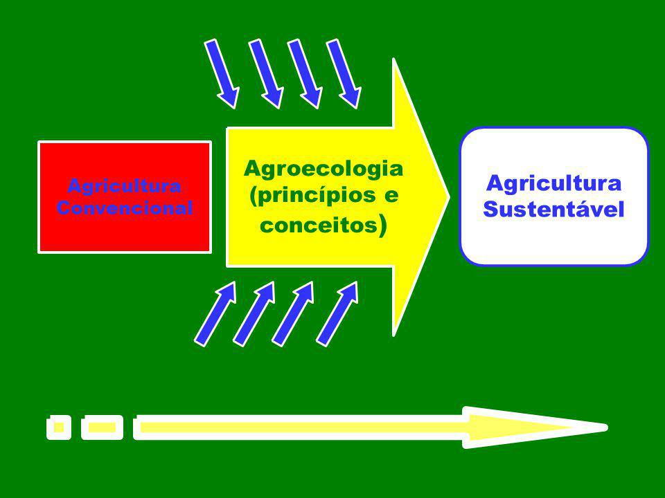 Agroecologia (princípios e conceitos ) Agricultura Sustentável Agricultura Convencional