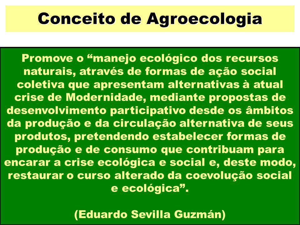 """Promove o """"manejo ecológico dos recursos naturais, através de formas de ação social coletiva que apresentam alternativas à atual crise de Modernidade,"""