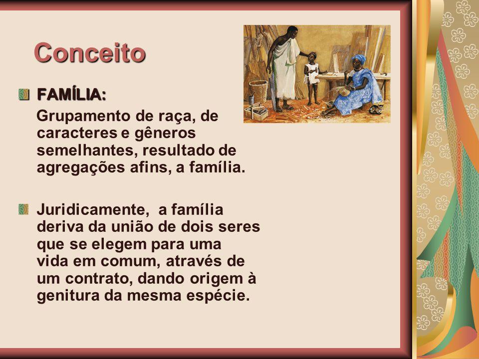 Conceito FAMÍLIA: Grupamento de raça, de caracteres e gêneros semelhantes, resultado de agregações afins, a família. Juridicamente, a família deriva d