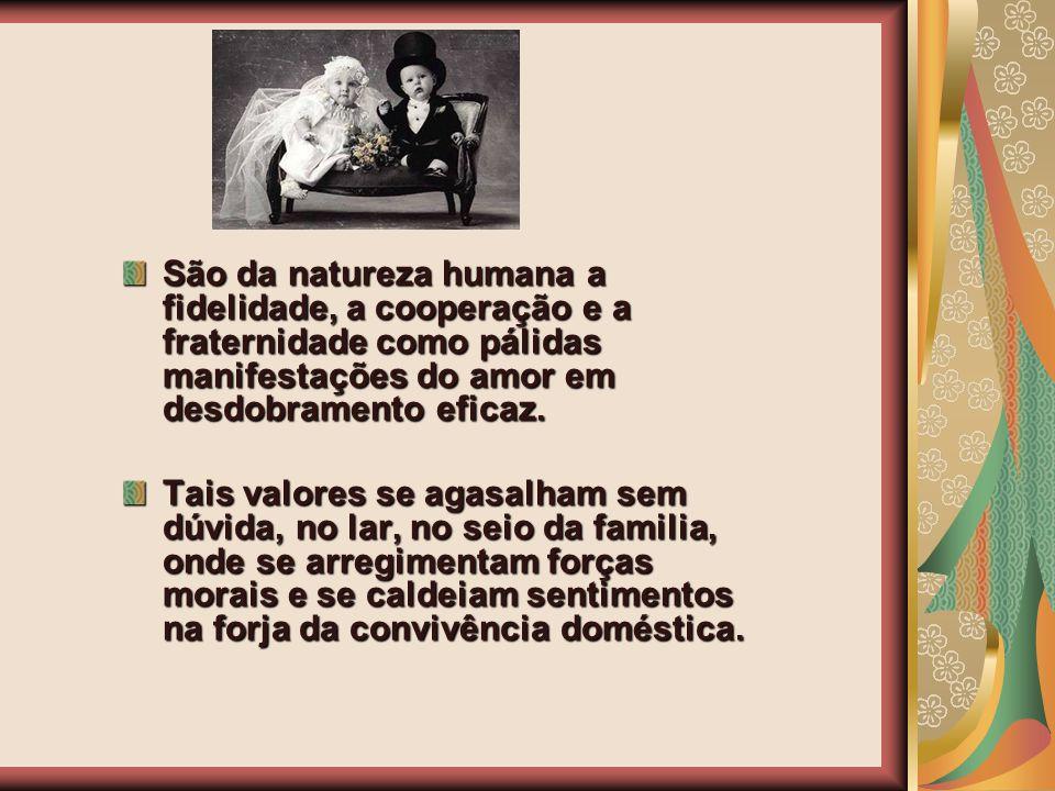 São da natureza humana a fidelidade, a cooperação e a fraternidade como pálidas manifestações do amor em desdobramento eficaz. Tais valores se agasalh